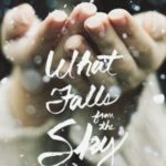 What Falls From the Sky Review